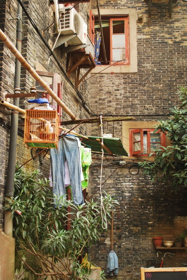 Residents' laundry and birds