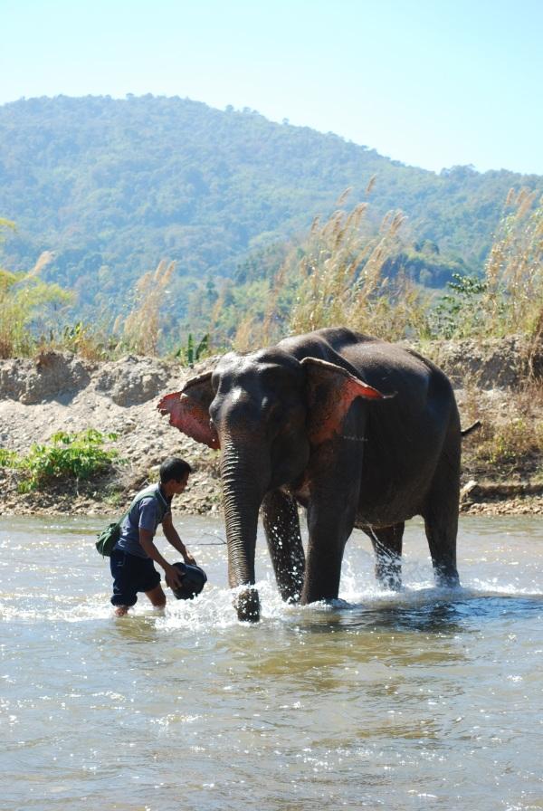 Thailand 544