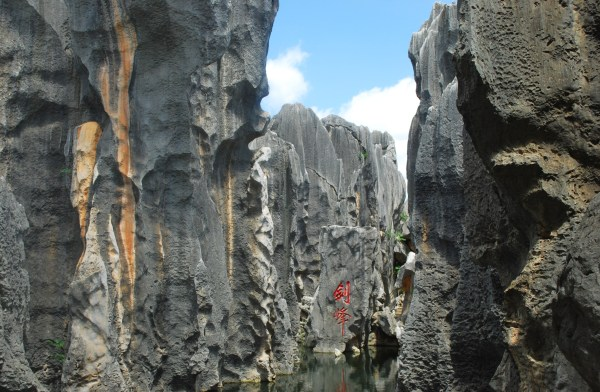Stone Forest (37)